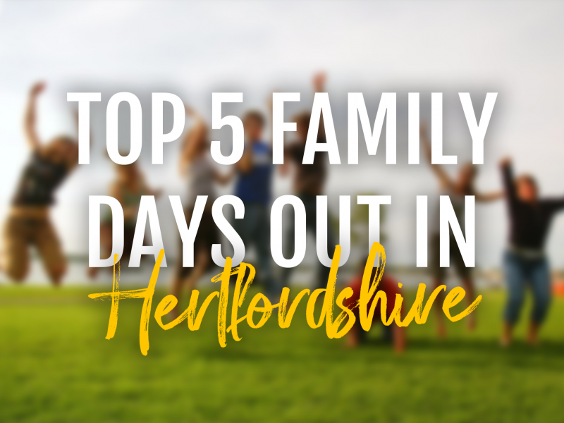 top 5 family days out